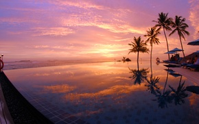 Picture palm trees, the ocean, the evening, pool, Maldives
