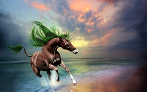 Picture sea, wave, the sky, reflection, animal, horse, art, unicorn, jump, sunset 3D