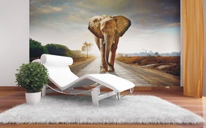 Picture design, style, room, interior, Wallpapers
