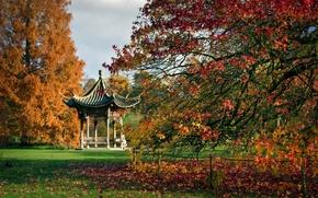 Picture autumn, trees, England, pagoda, gazebo, England, Botanical garden, Wesley, RHS Garden, Wisley