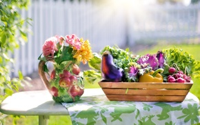 Picture summer, flowers, table, vase, box, vegetables, tablecloth