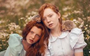 Picture children, girls, chamomile, freckles, hedgehogs