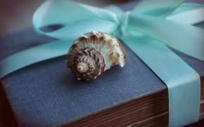 Picture macro, box, gift, sink, shell, tape, blue