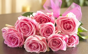 Picture roses, bouquet, pink, bow, buds