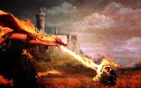Picture landscape, battle, knight, Dragons, dragons, Dragon's Prophet