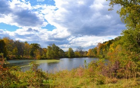 Picture autumn, the sky, clouds, trees, lake, Nature, sky, trees, nature, autumn