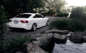 Picture Audi, Audi, white, white