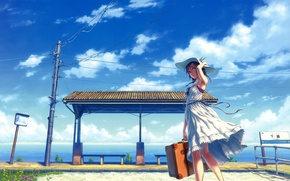 Picture the sky, grass, girl, clouds, flowers, tape, the wind, wire, post, station, hat, dress, suitcase, …