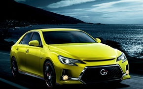 Picture Toyota, Toyota, Mark X, 350S