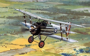 Picture wheels, aircraft, engine, biplane, Gloster Grebe