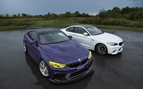 Picture BMW, Tuning, Rain, Cars, IND, 2015-16, M4
