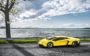 Picture Sea, Road, Lamborghini, Supercar, Yellow, Aventador, Supercar, LP720-4, 50 Anniversario Edition