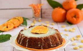 Picture plate, pie, citrus, cream, sweet, Mandarin