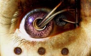 Picture Eyes, Wire, Biomechanics