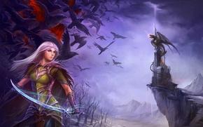 Picture girl, birds, weapons, castle, dragon, elf, sword, elf, saber, the nightmares of winter, illustration to ...