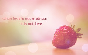 Wallpaper strawberry, paint, phrase, the phrase, colors, when love is not madness it is not love, ...