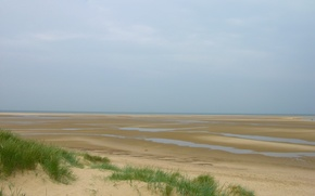 Wallpaper tide, grass, Sand