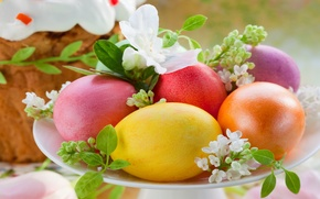 Picture eggs, Easter, cake, cake, cakes, glaze, spring, Easter, eggs, holiday, decoration, blessed