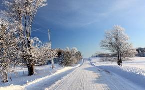 Picture Nature, Winter, Road, Trees, Landscape