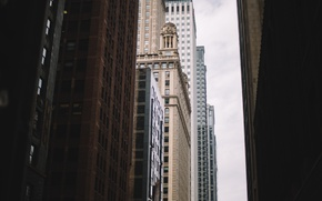 Picture building, home, skyscrapers