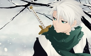 Picture wallpaper, sword, game, Bleach, green eyes, anime, chibi, Snow, snow, katana, man, boy, ken, captain, ...
