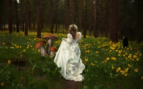 Picture girl, nature, mushrooms