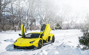 Picture Lamborghini, Snow, Lamborghini, Door, Snow, Yellow, Aventador, Aventador, Supercar, LP720-4, 50 Anniversario Edition