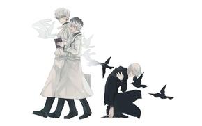 Picture Ken Kanek, Sasaki Smell, Tokyo Ghoul: Reborn, Tokyo Ghoul: Re, Arima Kisho