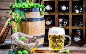 Picture beer, mug, bottle, light, barrel, hops