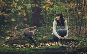 Picture forest, girl, raccoon, company