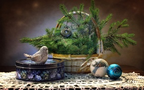 Picture box, toys, spruce, bird