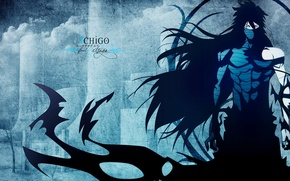 Picture bleach, final-getsuga, mugetsu, ichigo