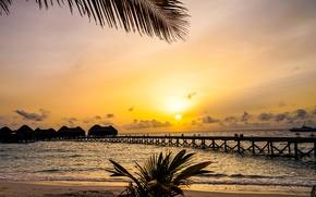 Picture sand, sea, sunset, branches, tropics, palm trees, shore, ship, horizon, pierce, The Maldives, Bungalow