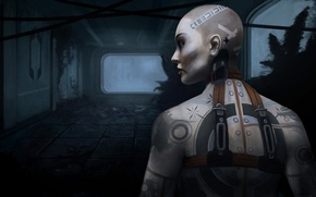Picture Mass Effect 2, girl, art, Jack, tattoo, Jack, tattoo