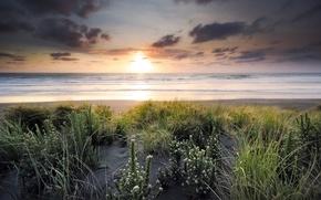 Picture sea, landscape, sunset, shore