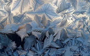 Picture frost, glass, patterns