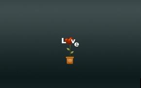 Wallpaper flower, love, flowers, heart, minimalism, love, heart, pot, plant vase