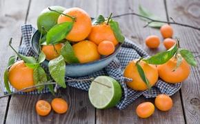 Picture leaves, plate, lime, fruit, citrus, tangerines, Anna Verdina, kumquat