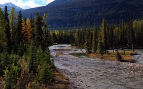 Wallpaper Mount Robson Provincial Park, stones, mountains, trees, Canada, river, forest