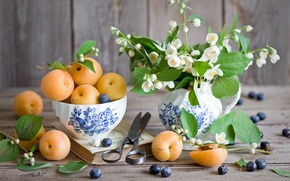 Picture blueberries, apricots, Jasmine