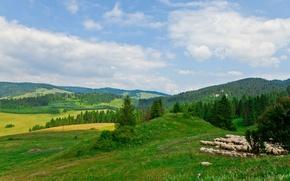 Picture Nature, Meadows, Forest, Poland, Landscape, The Sky Szczawnica