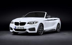 Picture BMW, BMW, 2 Series, 2015, F23, Performance Accessories, Cabrio M