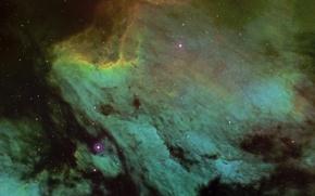 Picture in the constellation, Swan, Pelican nebula, Pelican Nebula