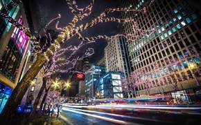 Picture road, trees, night, the city, lights, building, home, skyscrapers, excerpt, Chicago, USA, USA, garland, Il, …