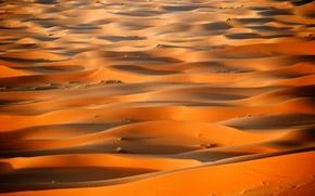 Picture desert, dunes, Africa, Sugar, Morocco