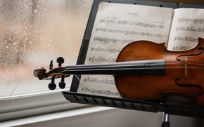 Picture notes, music, violin