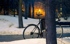 Picture winter, the sun, snow, trees, sunset, Park, street, trees, sunset, snow, sun, street, winter park