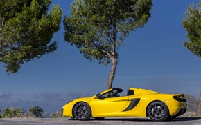 Picture the sky, trees, yellow, spider, convertible, spider, McLaren, Mclaren MP4-12C