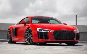 Picture Audi, V10, Track, ADV10, Spec, 2017, r8