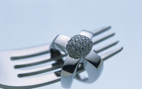 Picture ring, decoration, platinum